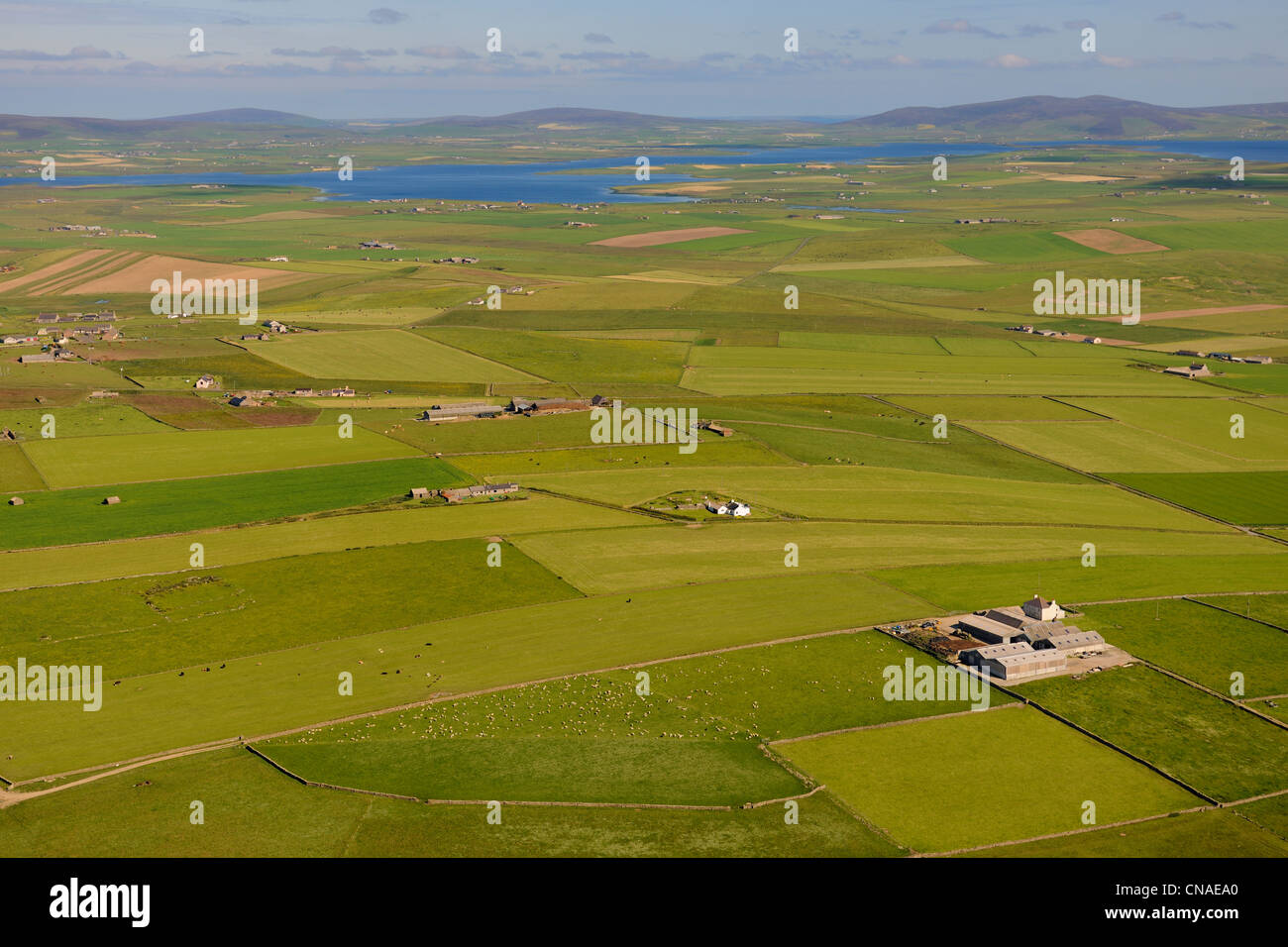 United Kingdom, Scotland, Orkney Islands, Isle of Mainland, fields and farms scattered on the east coast (aerial Stock Photo