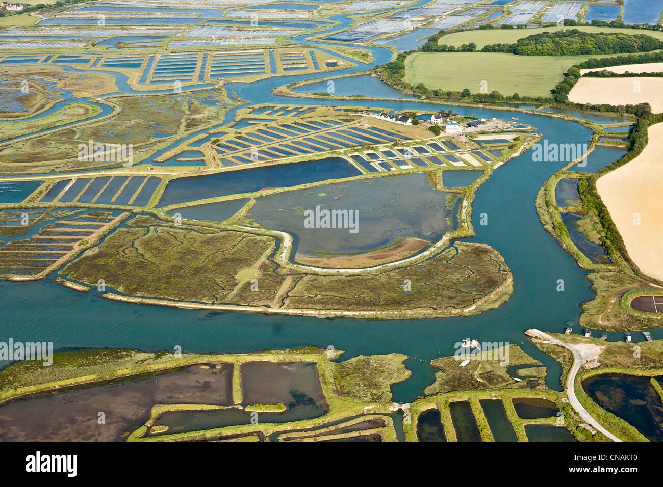 France, Loire-Atlantique, Assérac, Bassin du Mès saltworks (aerial photography) - Stock Image