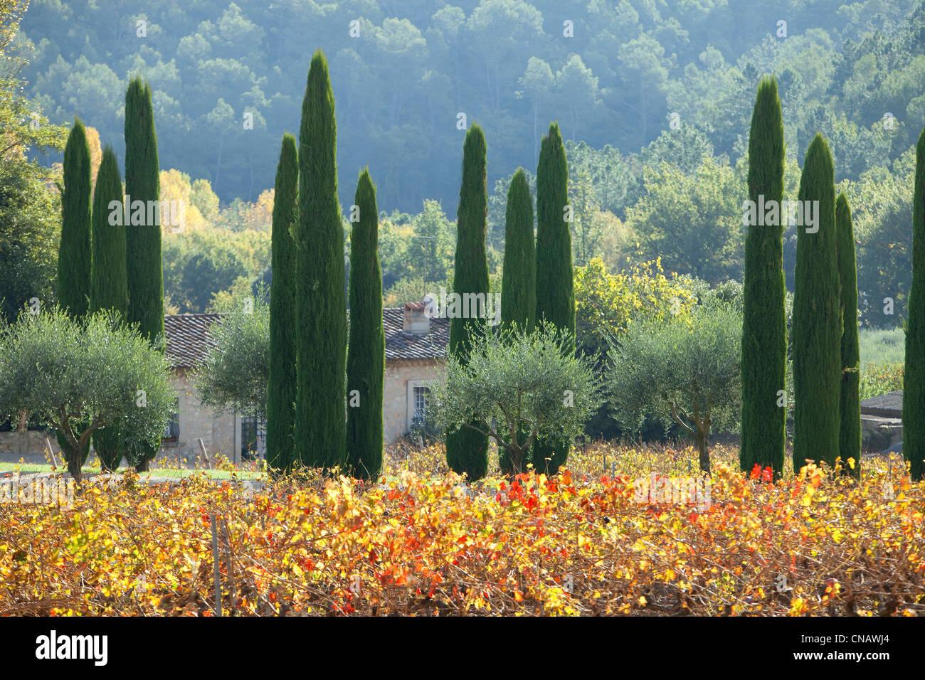 France, Var, Lorgues, Chateau de Berne, compulsory mention - Stock Image