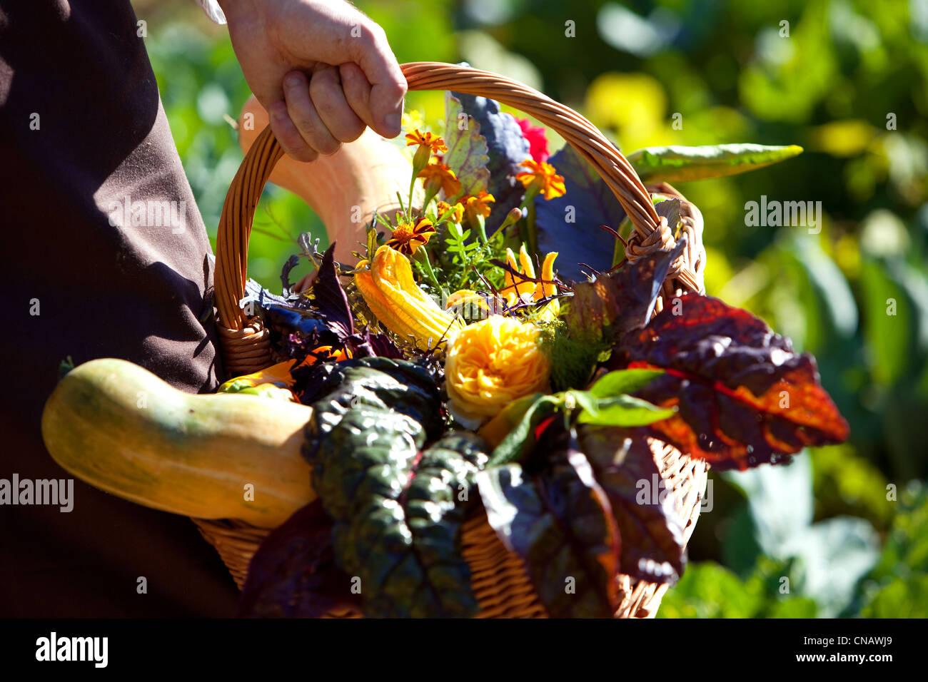 France, Var, Lorgues, Chateau de Berne, compulsory mention, the vegetable garden - Stock Image