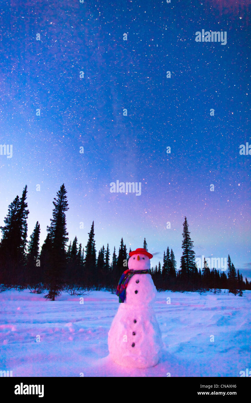 COMPOSITE,Snowman standing in a field at twilight, Winter, Broad Pass, Parks Highway,Southcentral Alaska - Stock Image