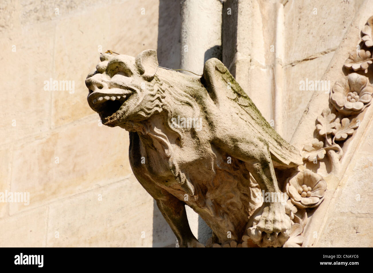 France, Somme, Amiens, Notre Dame d'Amiens Cathedral, listed as World Heritage by UNESCO, details of the gargoyles - Stock Image