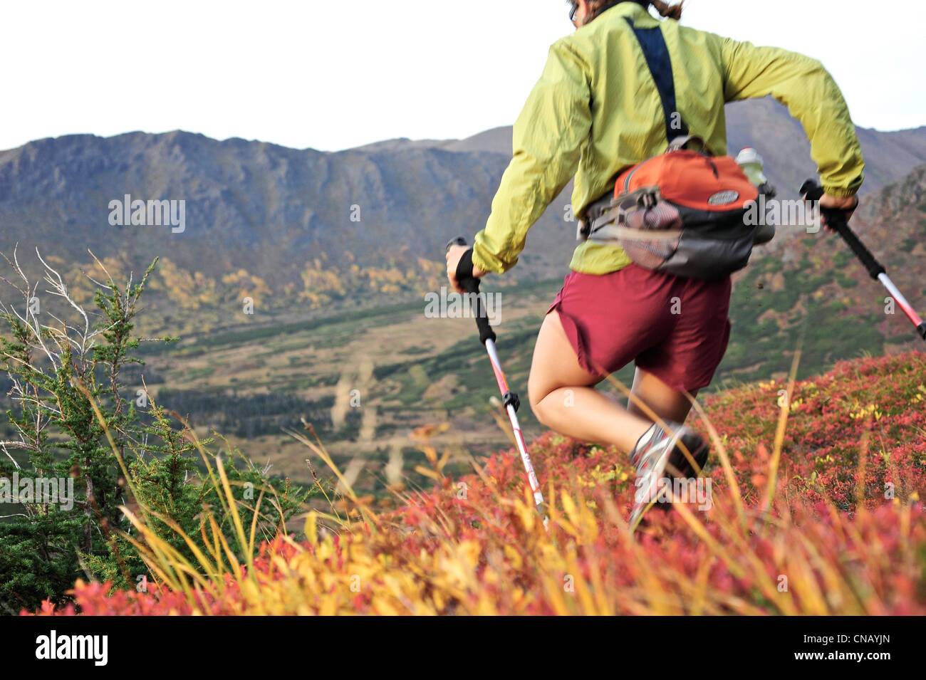 Female hiker on Flattop Mountain Trail in Chugach State Park, Anchorage, Southcentral Alaska, Autumn - Stock Image