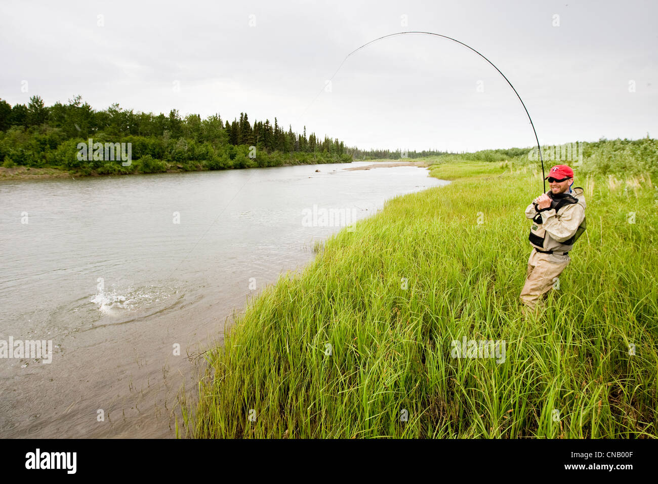 Fly fisherman fights a sockeye salmon on the Mulchatna River in the Bristol Bay area, Southwest Alaska, Summer - Stock Image