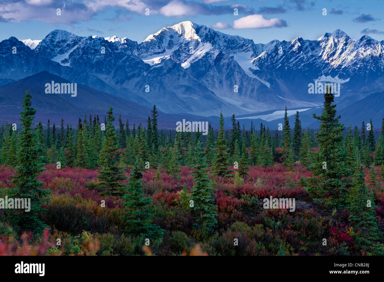 Scenic viw of the Alaska Range, Nenana Glacier and boreal forest along the Denali Highway, Alaska - Stock Image