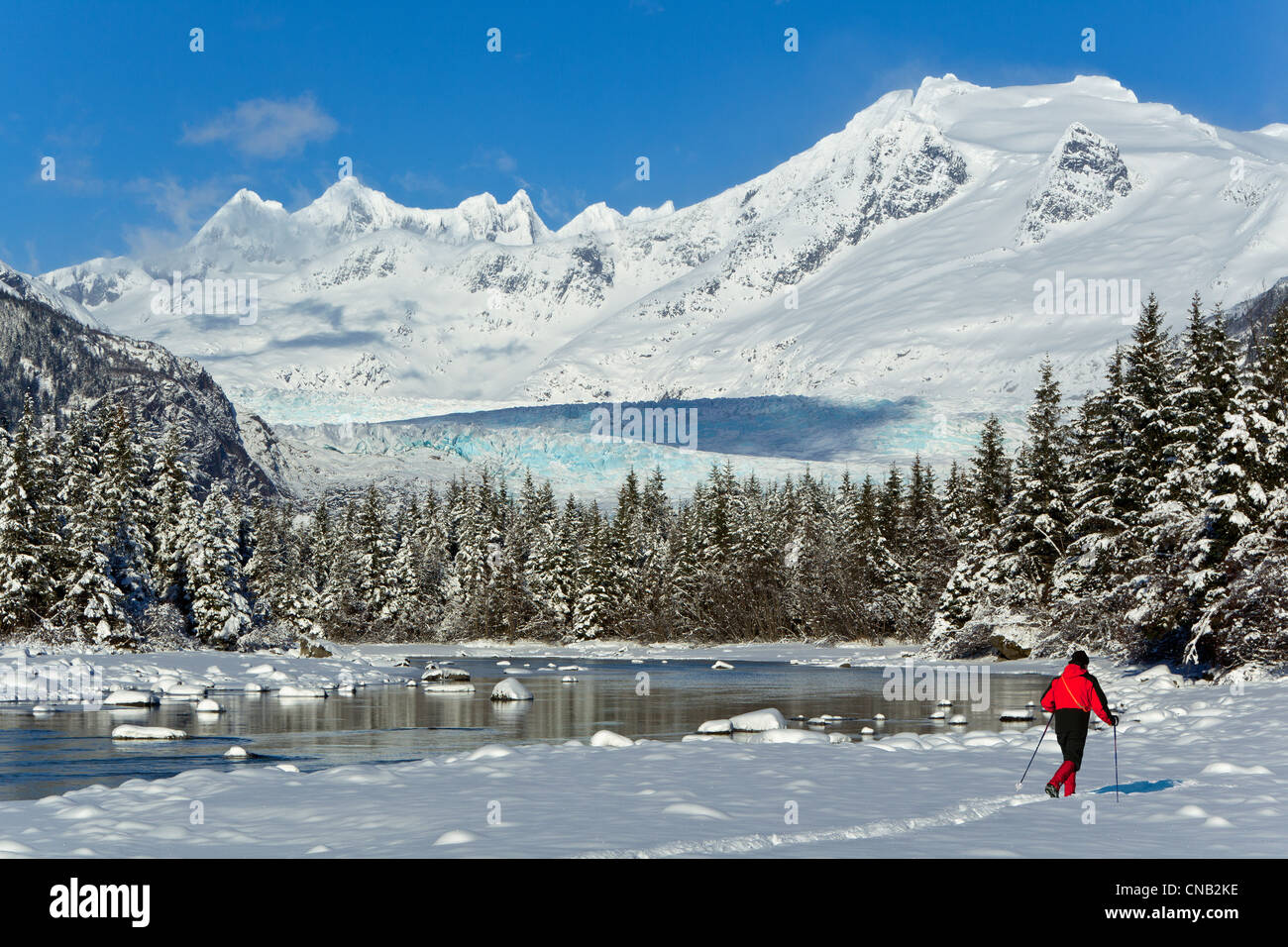 Person cross-country skiing in a winter landscape at Mendenhall River, Tongass National Forest, Alaska - Stock Image