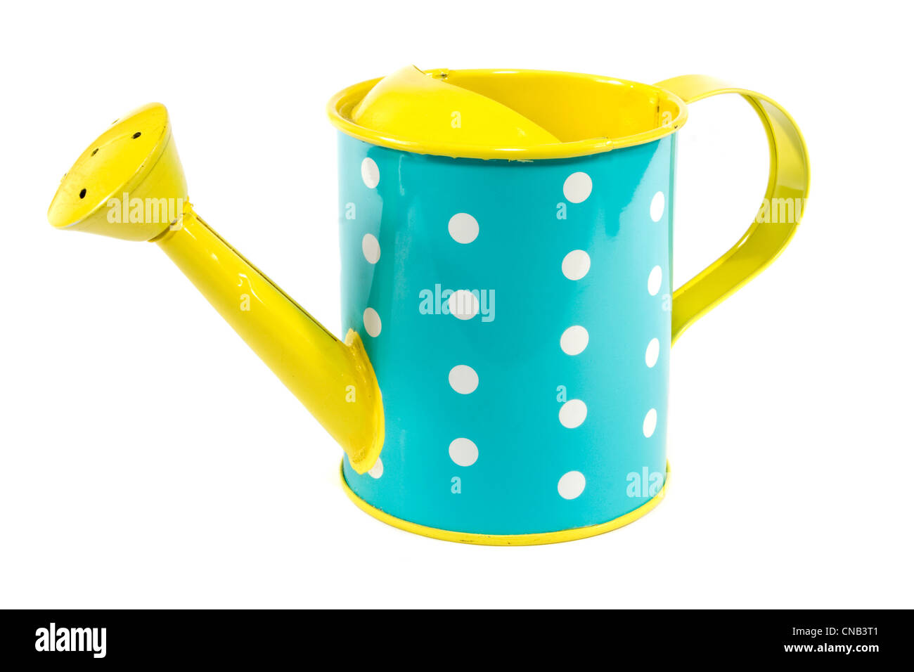 Blue and yellow polkerdot watering can on white Stock Photo