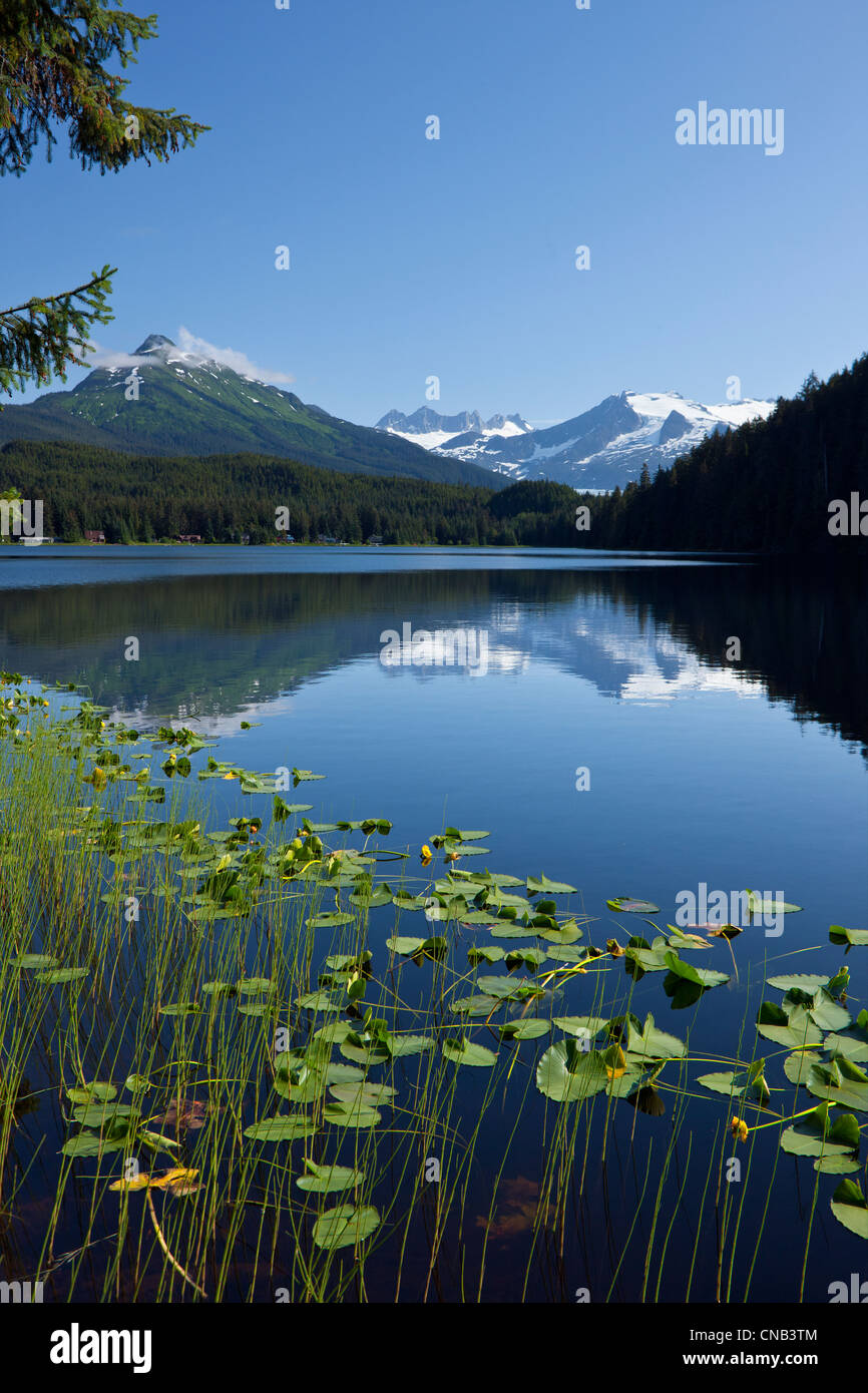 Scenic view of Auke Lake and Mendenhall Glacier and Coast Range Mountains, Southeast Alaska, Summer Stock Photo