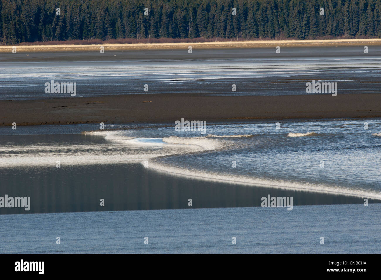 A bore tide rolls up the Turnagain Arm, Southcentral Alaska, Spring - Stock Image