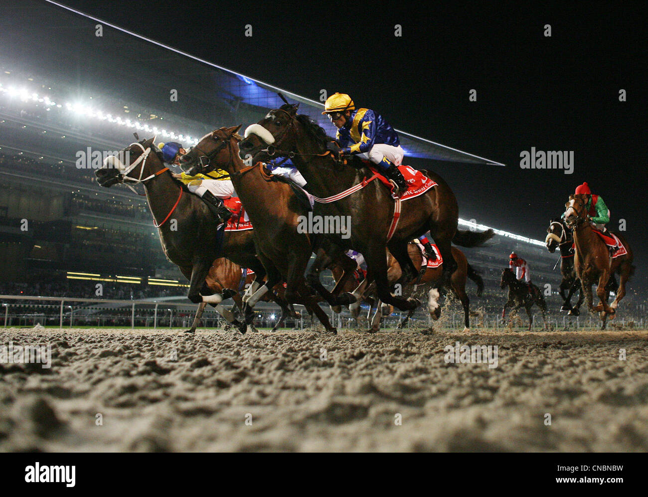 Horses and jockeys on the Meydan horse race track, Dubai, UAE - Stock Image