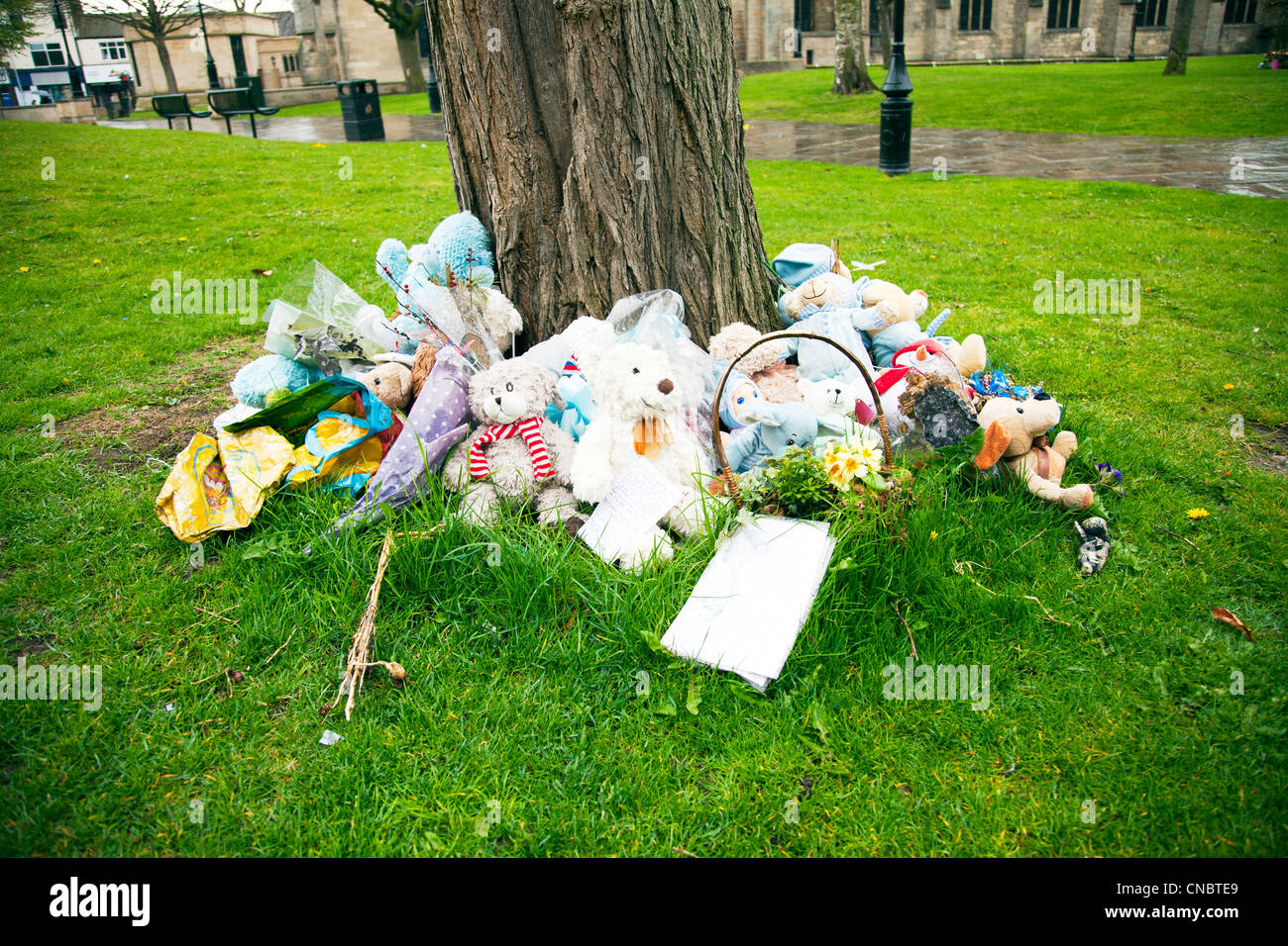 Roadside memorial where somebody has died following a road accident teddy bears and letters expressing sorrow for - Stock Image