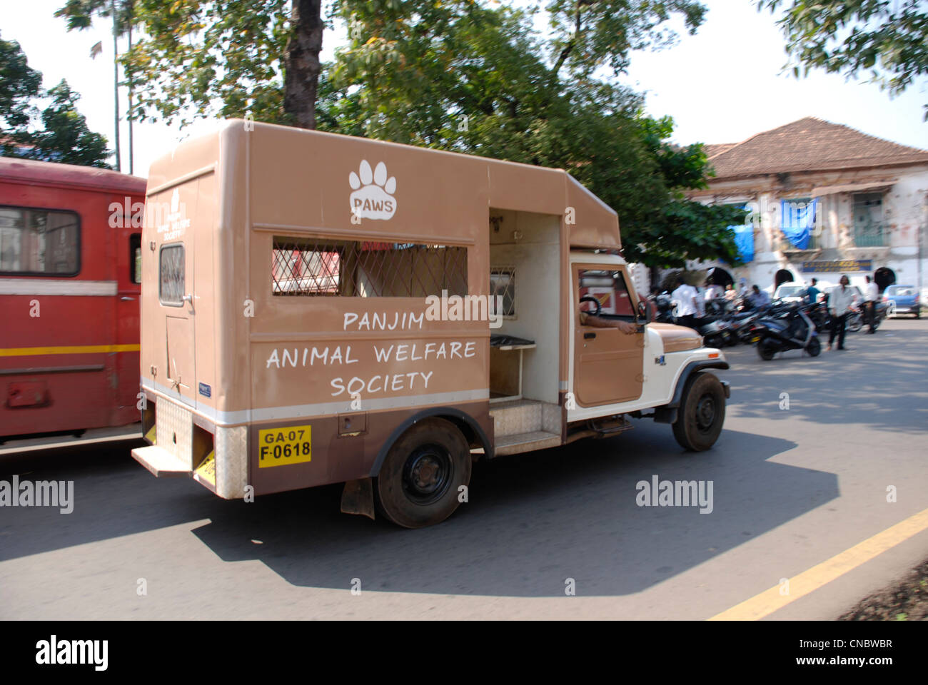 A vehicle for the Panjim Animal Welfare Society (PAWS) in the Goan capital of Panaji - Stock Image