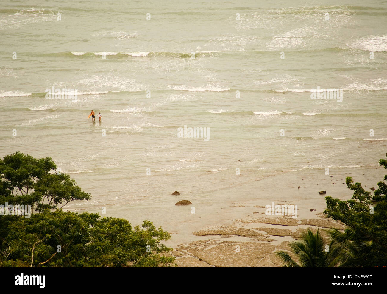 Pacific coast of costa rica on the osa peninsula - Stock Image