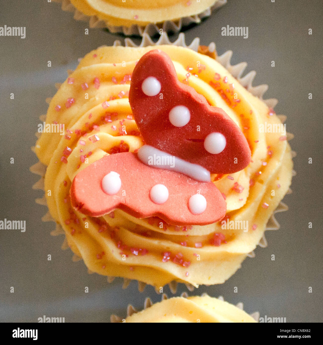 Close up shot of beautifully iced and decorated butterfly cupcake. - Stock Image
