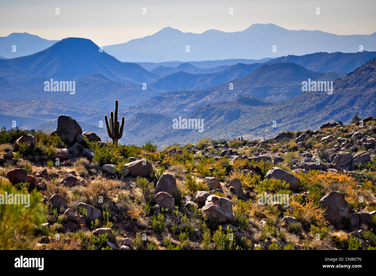 Arizona Landscape - Stock Image