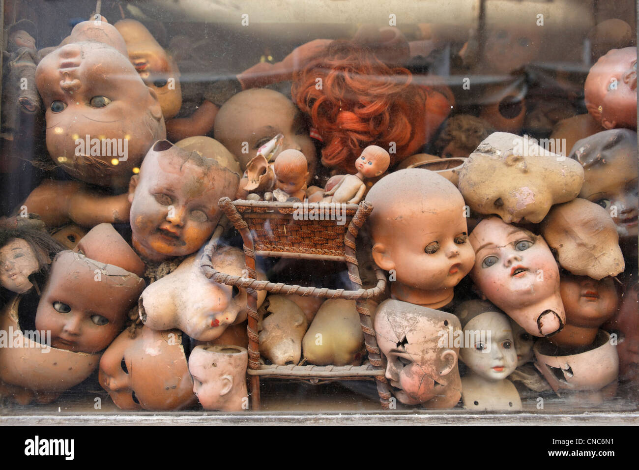 Italy, Lazio, Rome, heads of dolls behind a shop window - Stock Image