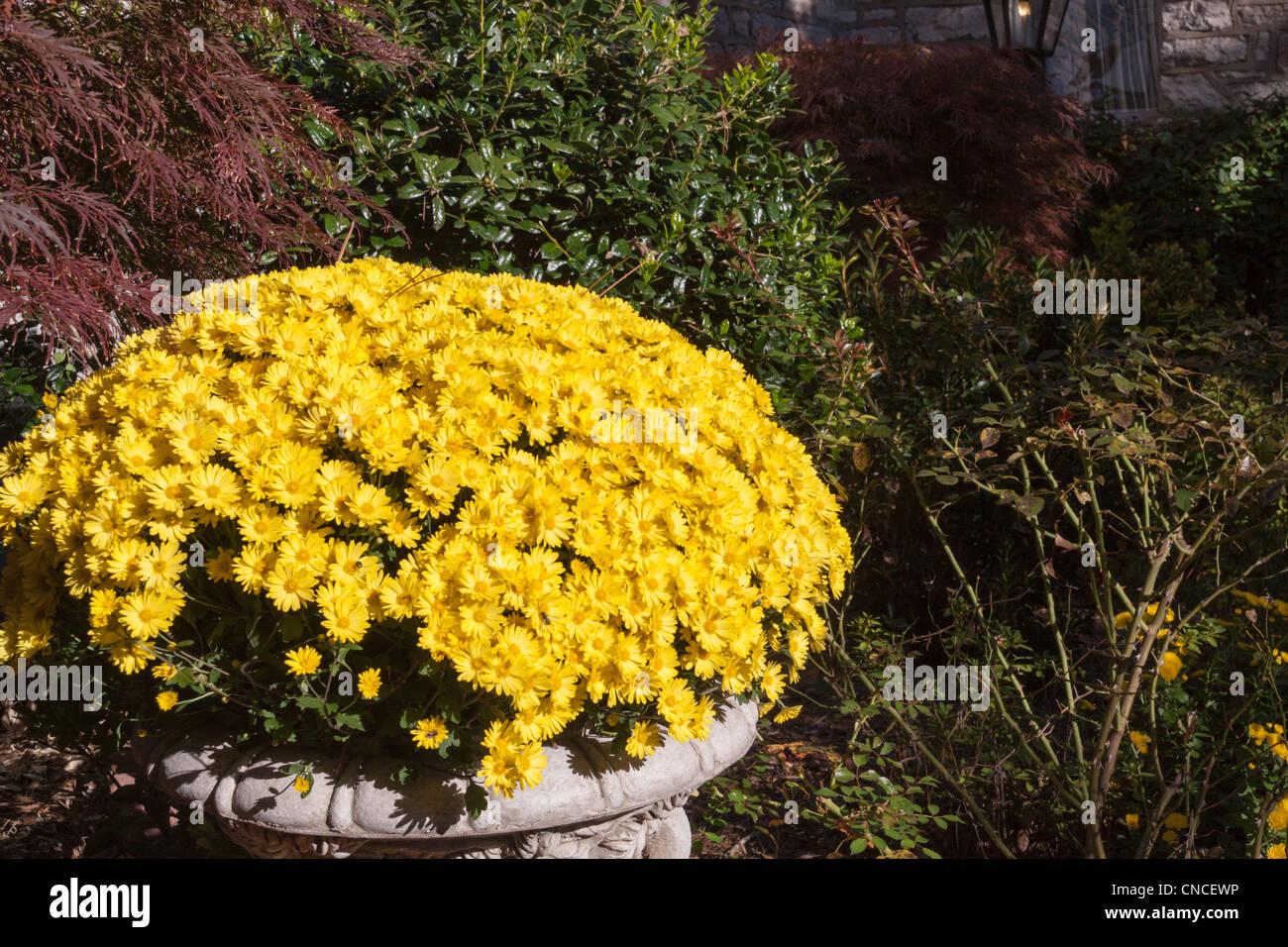 Arkansas Gardens Stock Photos U0026 Arkansas Gardens Stock ...