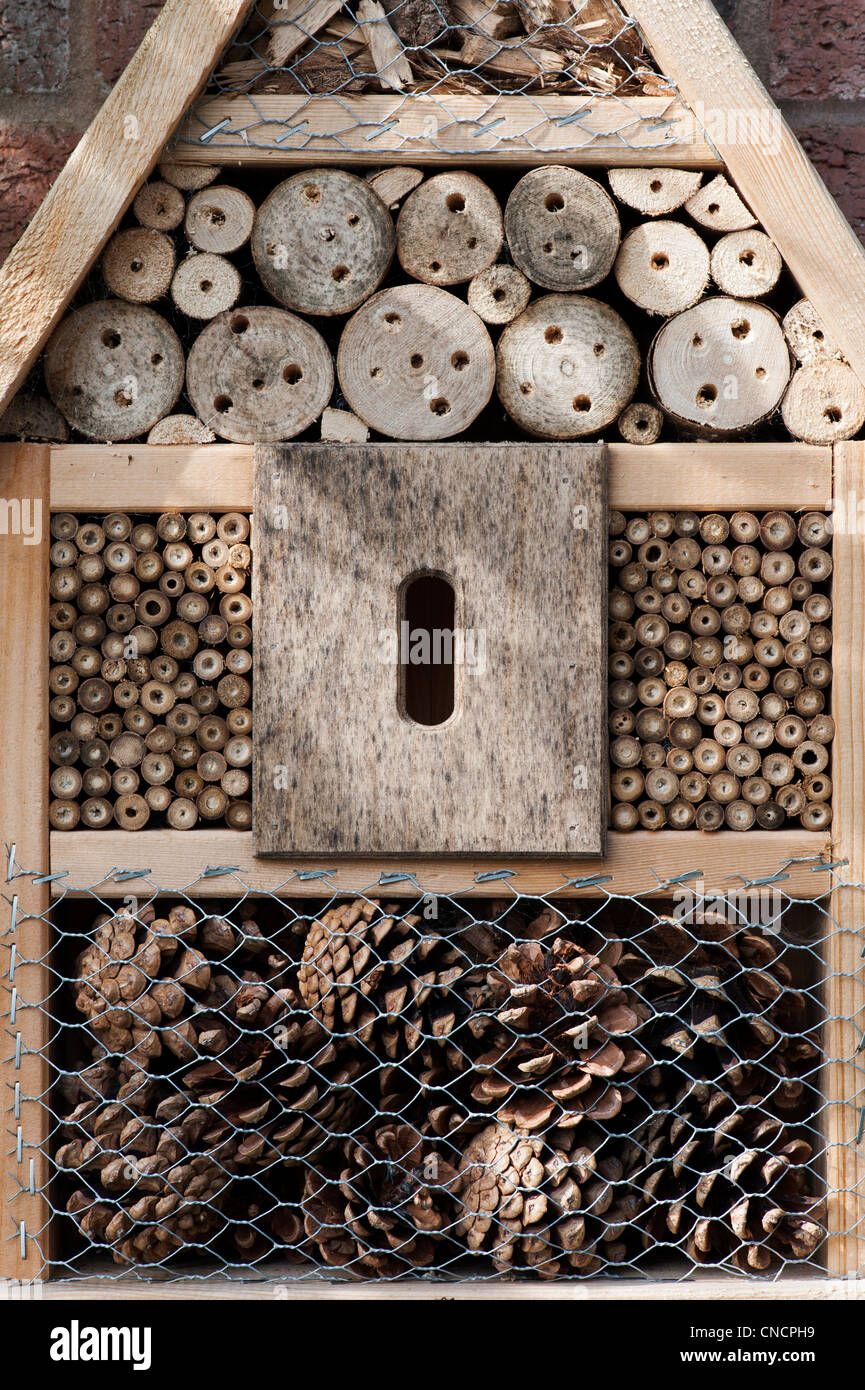 Inscet box for encouraging insects (wildlife) into the garden. UK - Stock Image