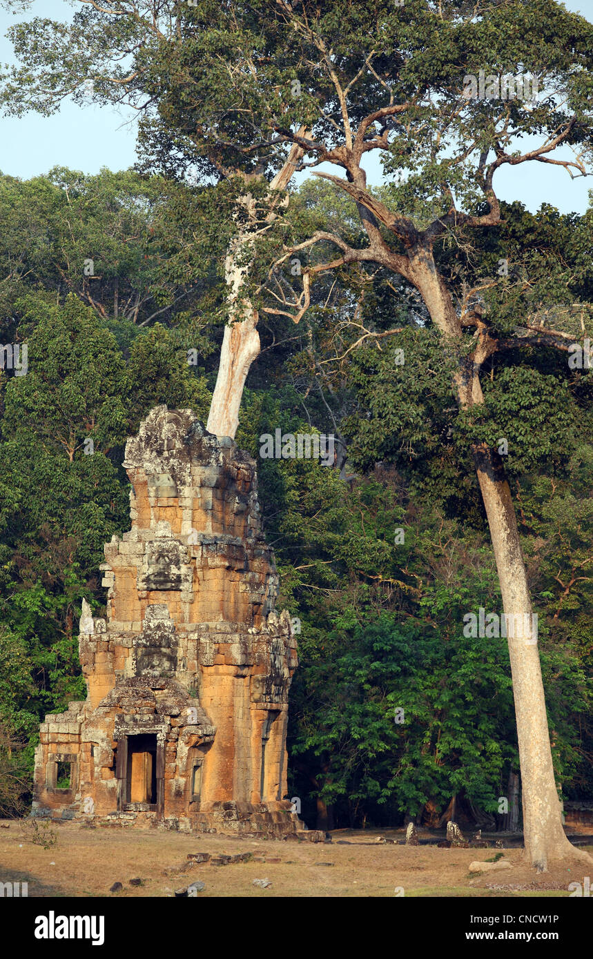 Prasat Suor Prat tower in Angkor Thom. Angkor, Siem Reap, Cambodia, Southeast Asia, Asia - Stock Image