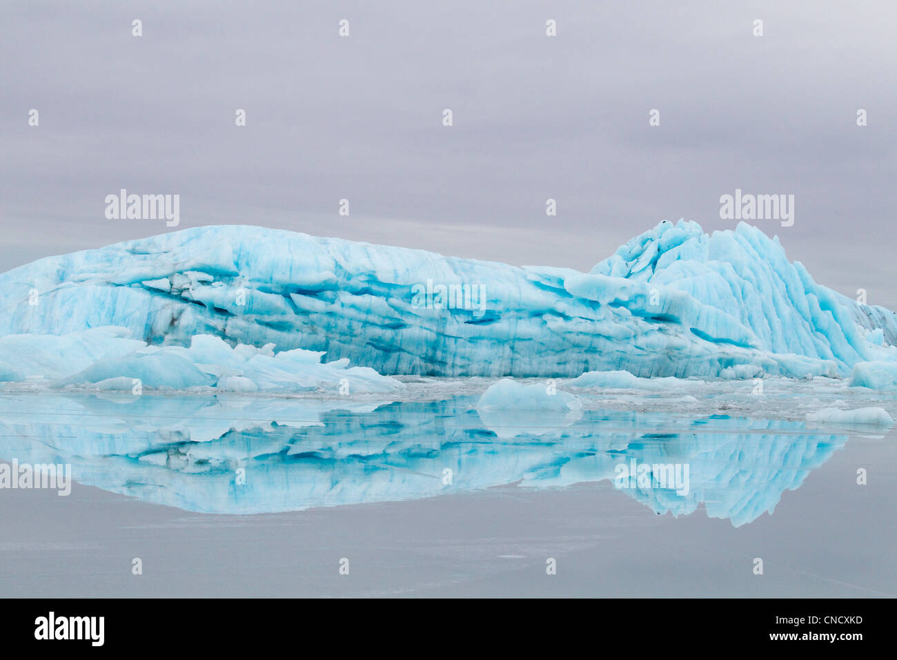 Blue iceberg from Sheridan Glacier reflects on thin film of water over ice, Chugach Mountains near Cordova, Alaska, - Stock Image