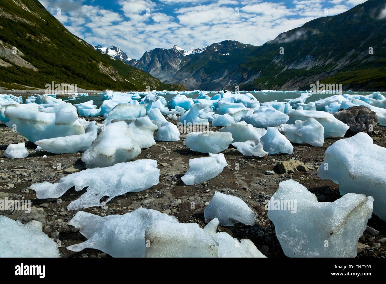 Scenic of icebergs from McBride Glacier in Muir Inlet, Glacier Bay National Park & Preserve, Southeast Alaska, - Stock Image