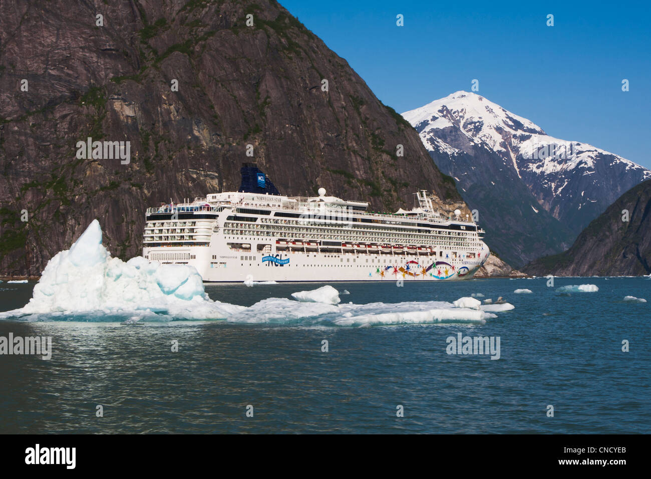 View Norwegian Star Cruise Ship In Tracy Arm With Ice