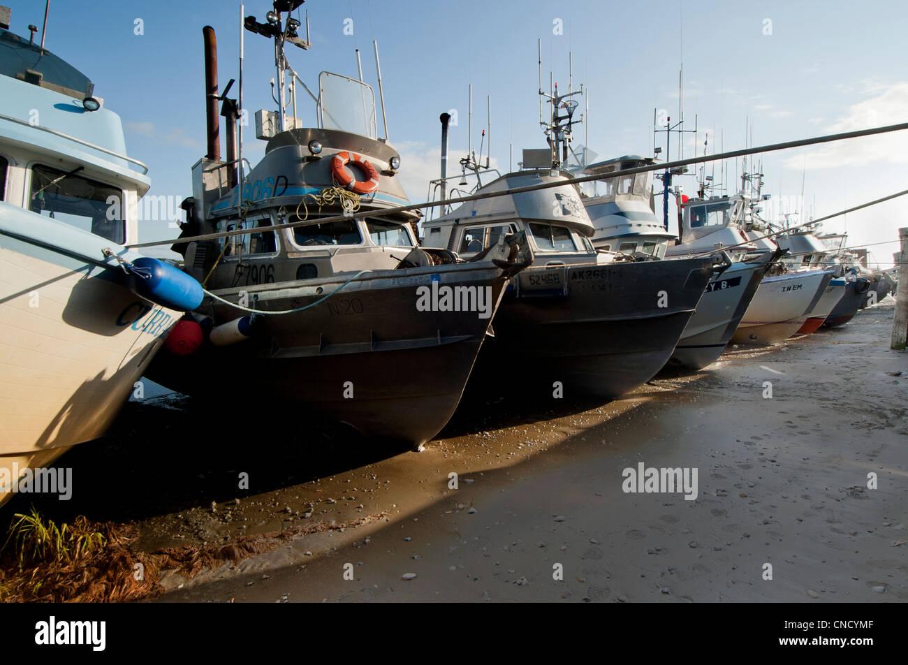 A row of drift net boats moored on the mud flats near Leader Creek in Naknek, Bristol Bay, Alaska - Stock Image