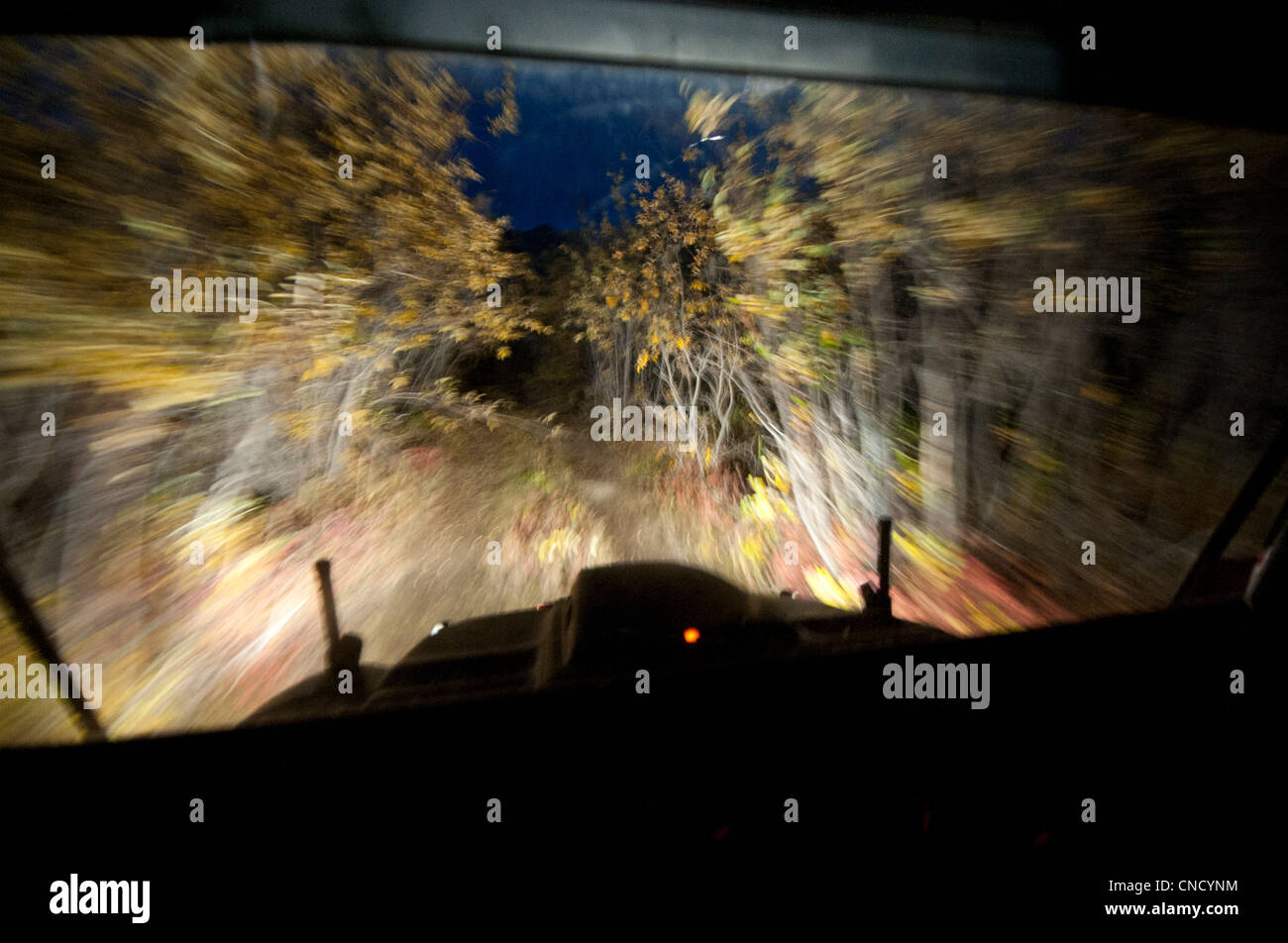 Night view from inside an Argo amphibious ATV driving on a tree-lined trail, Gates of the Arctic National Park , - Stock Image