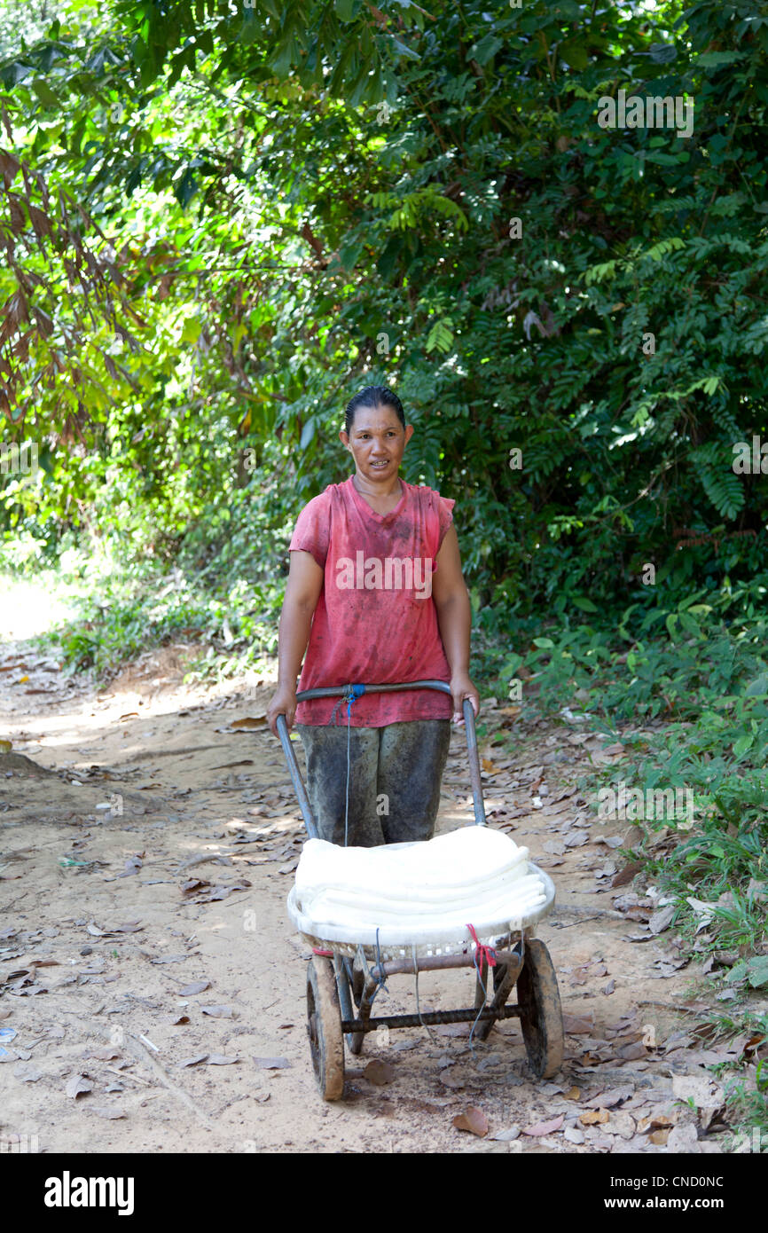 A Bulon island inhabitant carrying recent rubber sheets (Ko Phetra Park - Thailand) Femme Thaï transportant - Stock Image