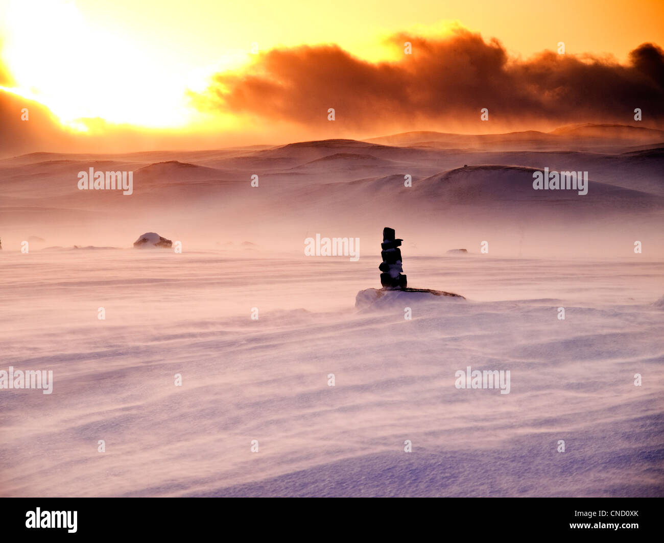 evening light and blowing snow on the Hardangervidda, Norway - Stock Image