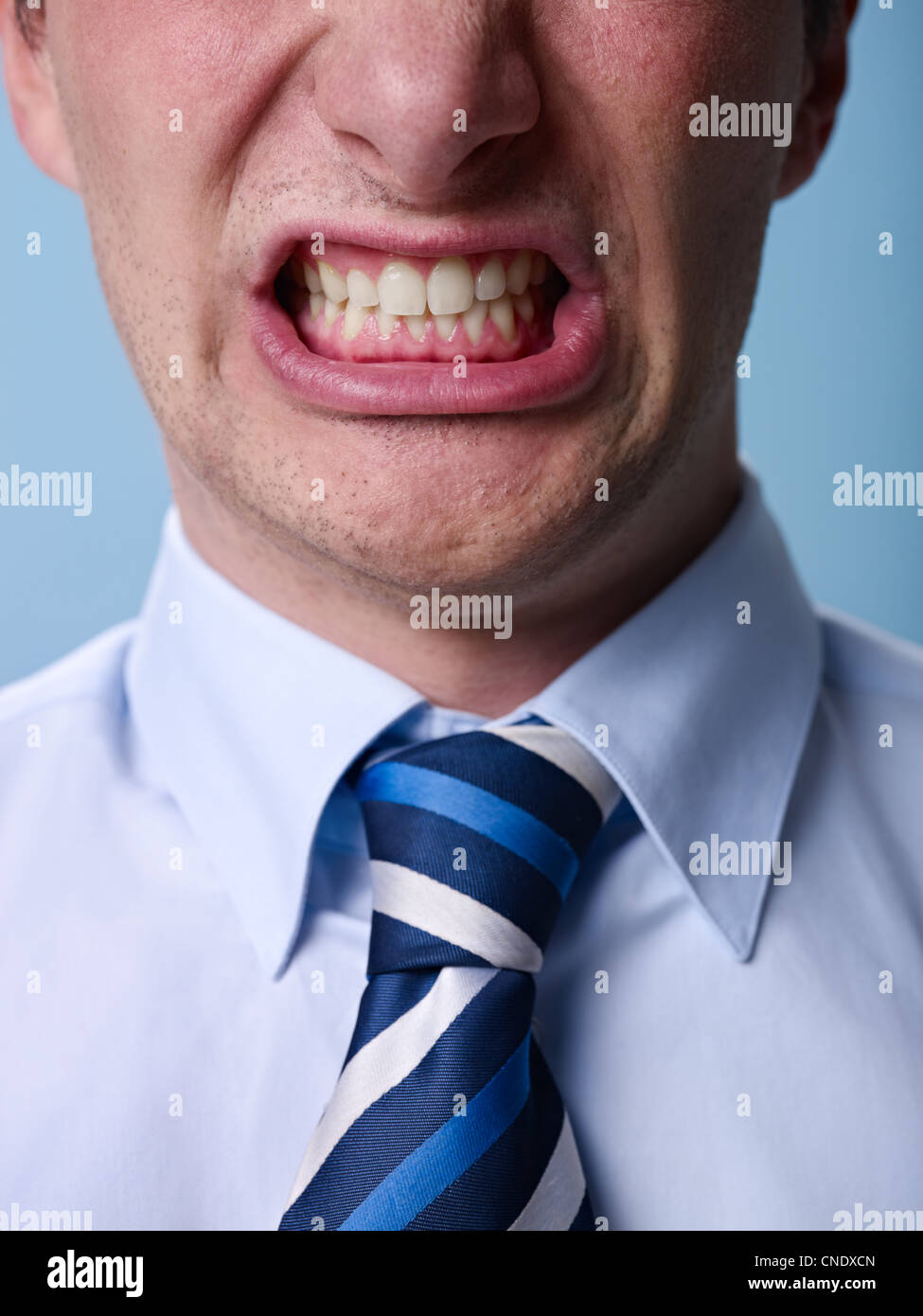 closeup of businessman screaming against blue background. Vertical shape - Stock Image