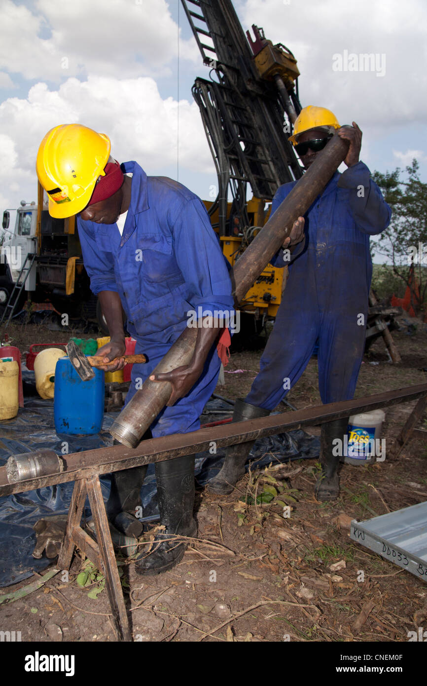 Drillers offsider extracting diamond PQ sized core from the core barrel at the drill rig site. - Stock Image