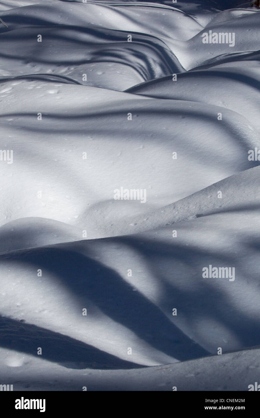 Snow with shadows, winter scene - Stock Image