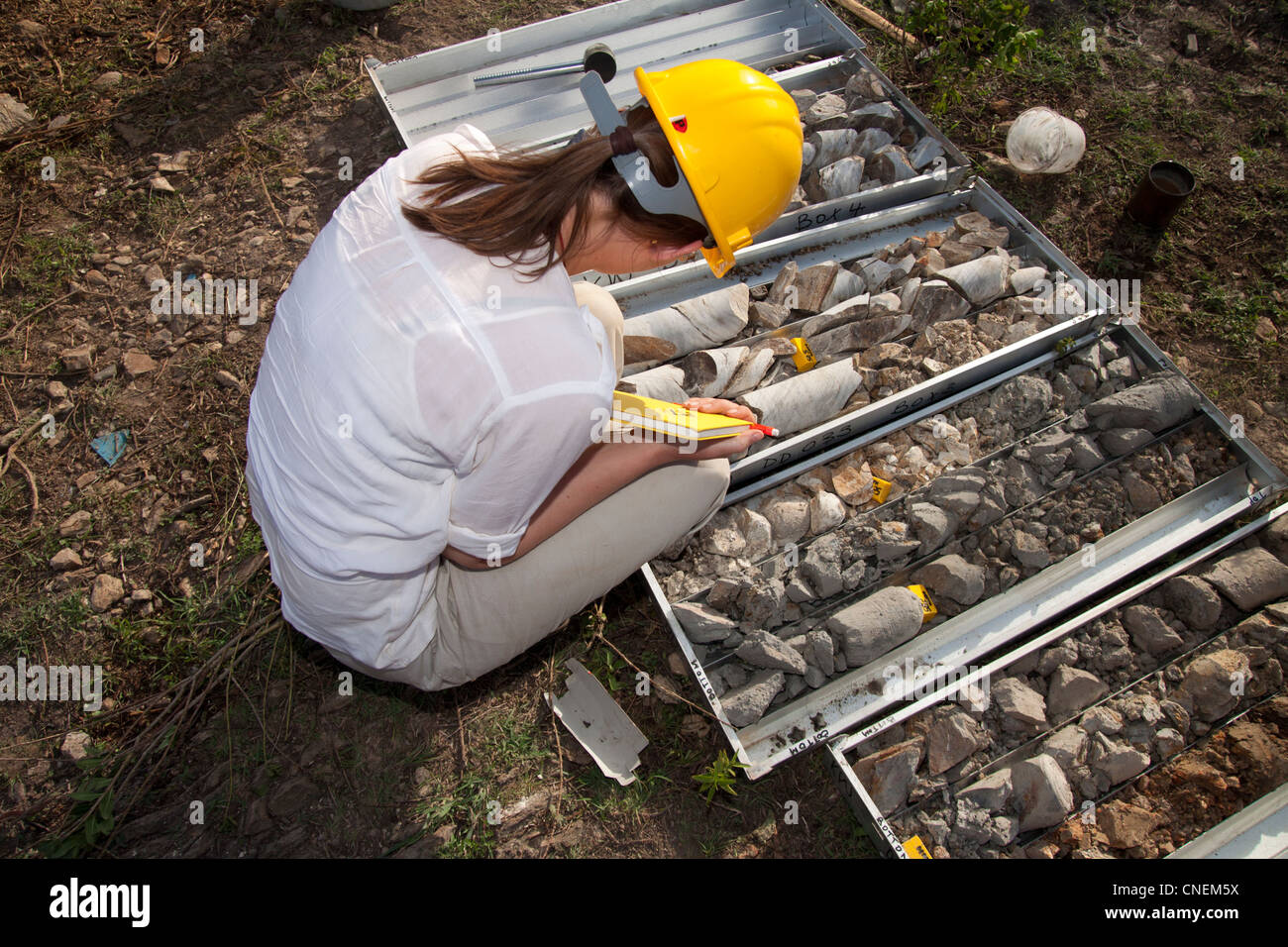 Female geologist inspecting and logging NQ diamond drill core for gold mineralisation - Stock Image