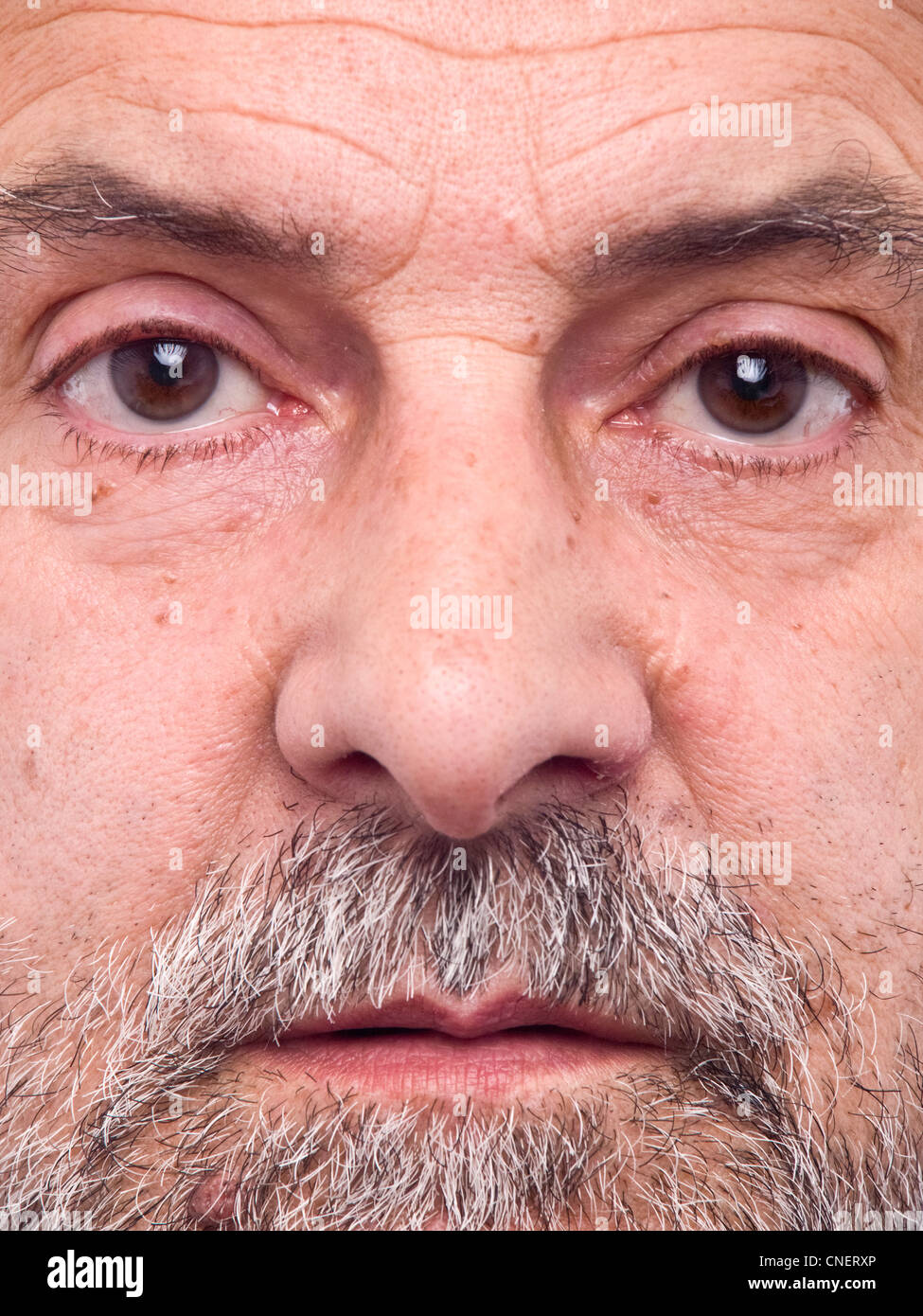 Extreme close up portrait of middle aged bearded man - Stock Image