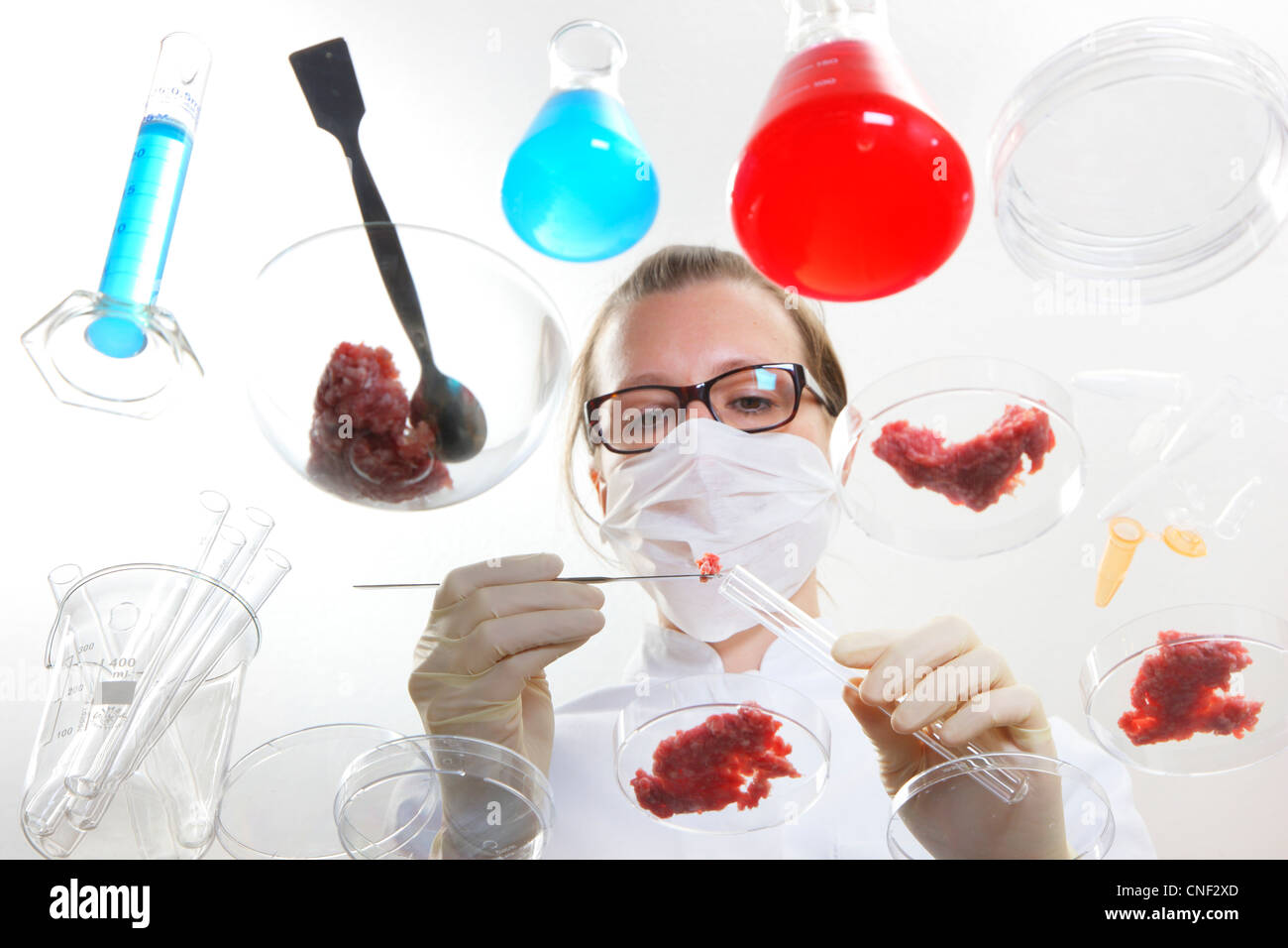 Symbolic image, food investigation. Laboratory technician examines various foods such as meat, sprouts, hen eggs. - Stock Image
