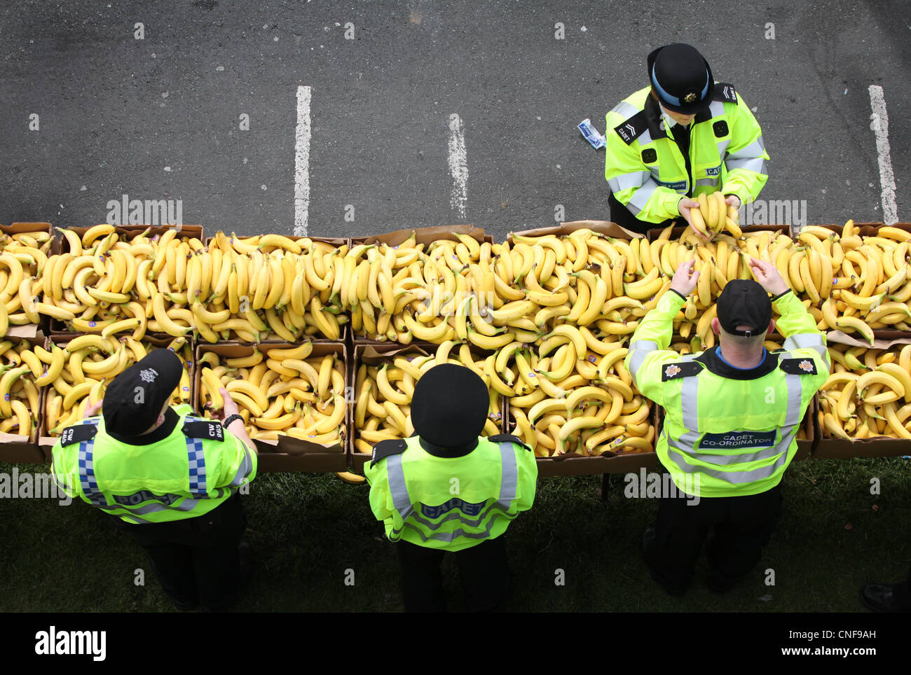 Police and cadets hand out bananas to runners at the finish line of the Brighton marathon 2012. Picture by James - Stock Image