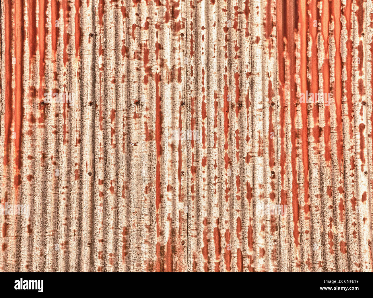 Close up of a sheet of corrugated metal rusting and processed in HDR - Stock Image