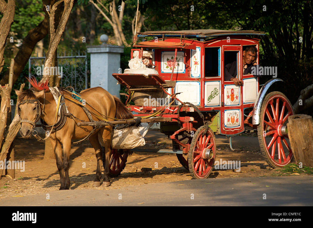 Local horsedrawn transport at Pyin U Lwin, Central Burma - a colonial relic. Myanmar. MODEL RELEASED - Stock Image