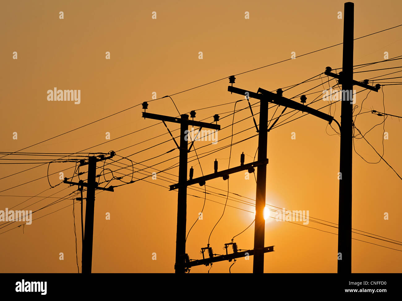 Telegraph  poles and telegraph wires at sunrise - Stock Image