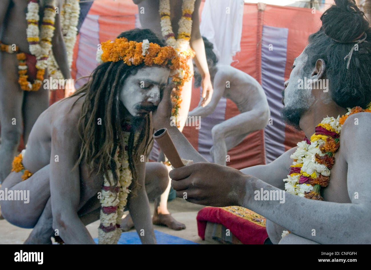 Sadhu getting ready for their bath during the Kumbh mela at Haridwar 2010 - Stock Image