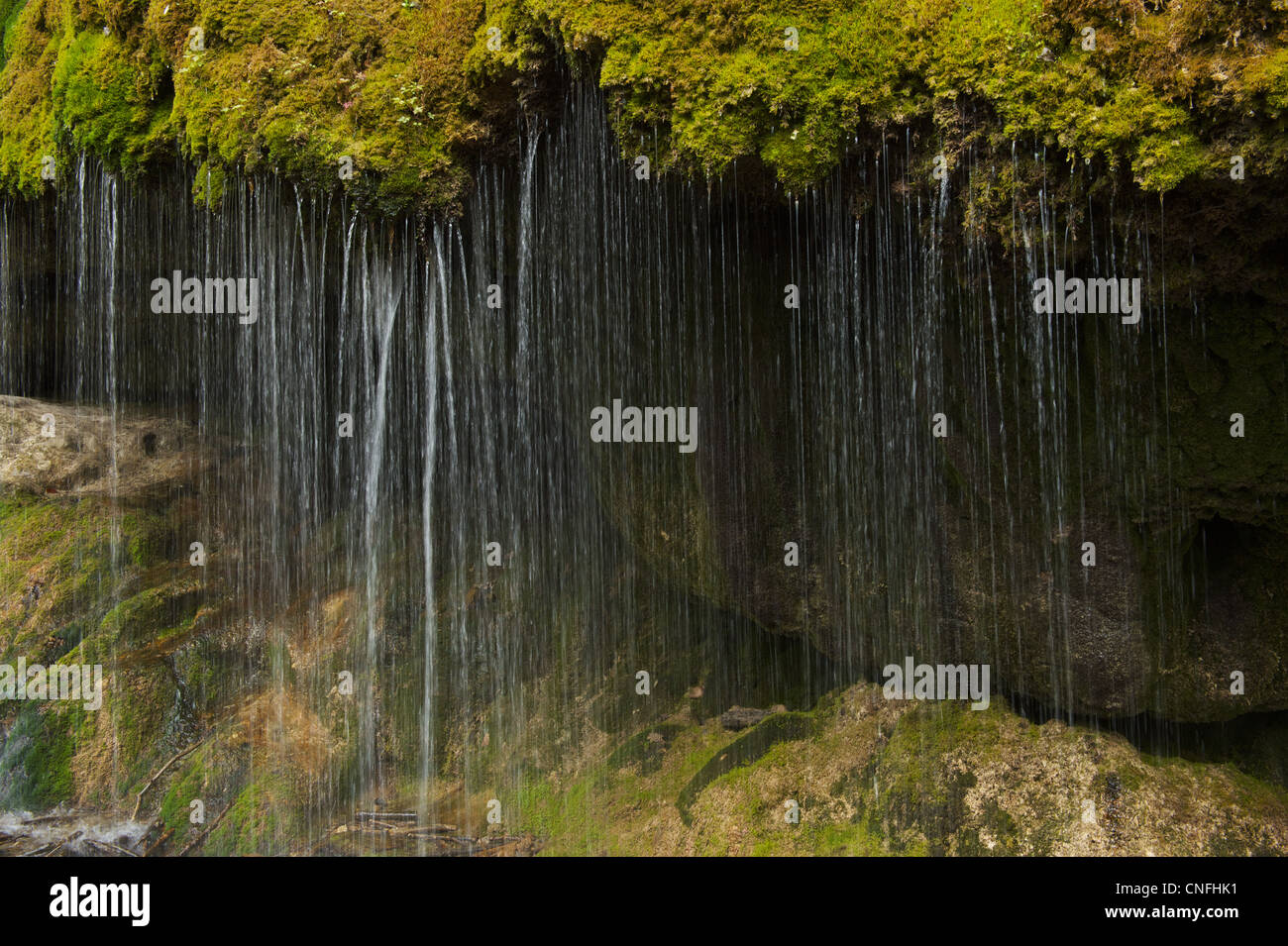 Water falls like a curtain from ledge covered with moss - Stock Image