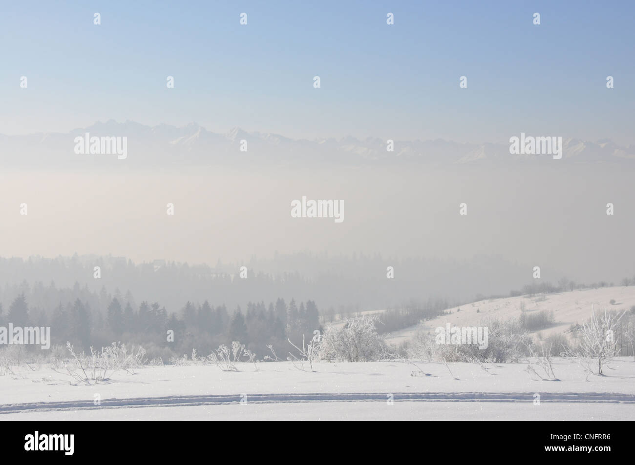 Pieniny Mountains, Karpaty, Poland in winter - landscape view - Stock Image