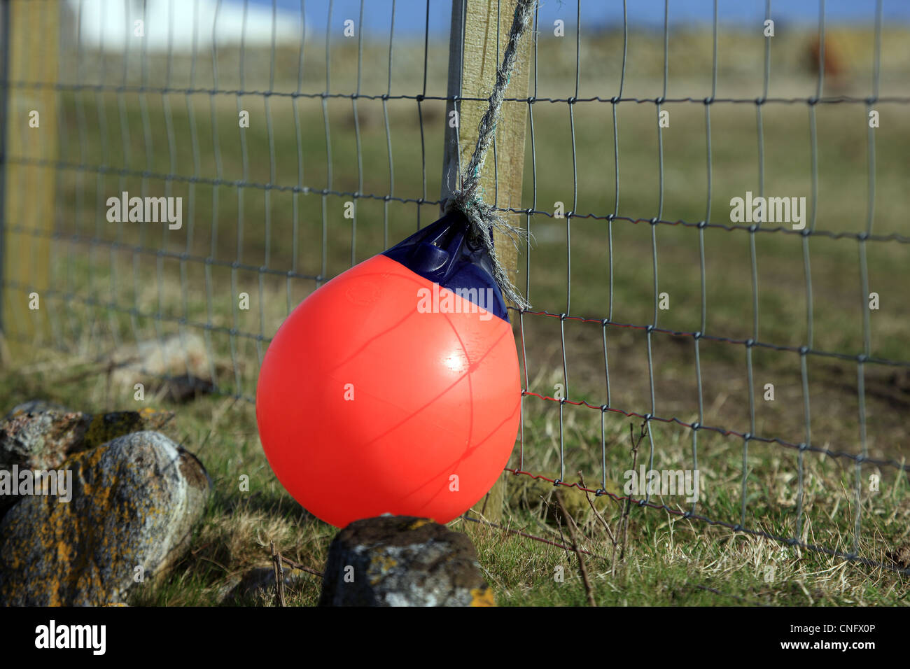 Buoy hanging from a fence on the Isle of Tiree - Stock Image