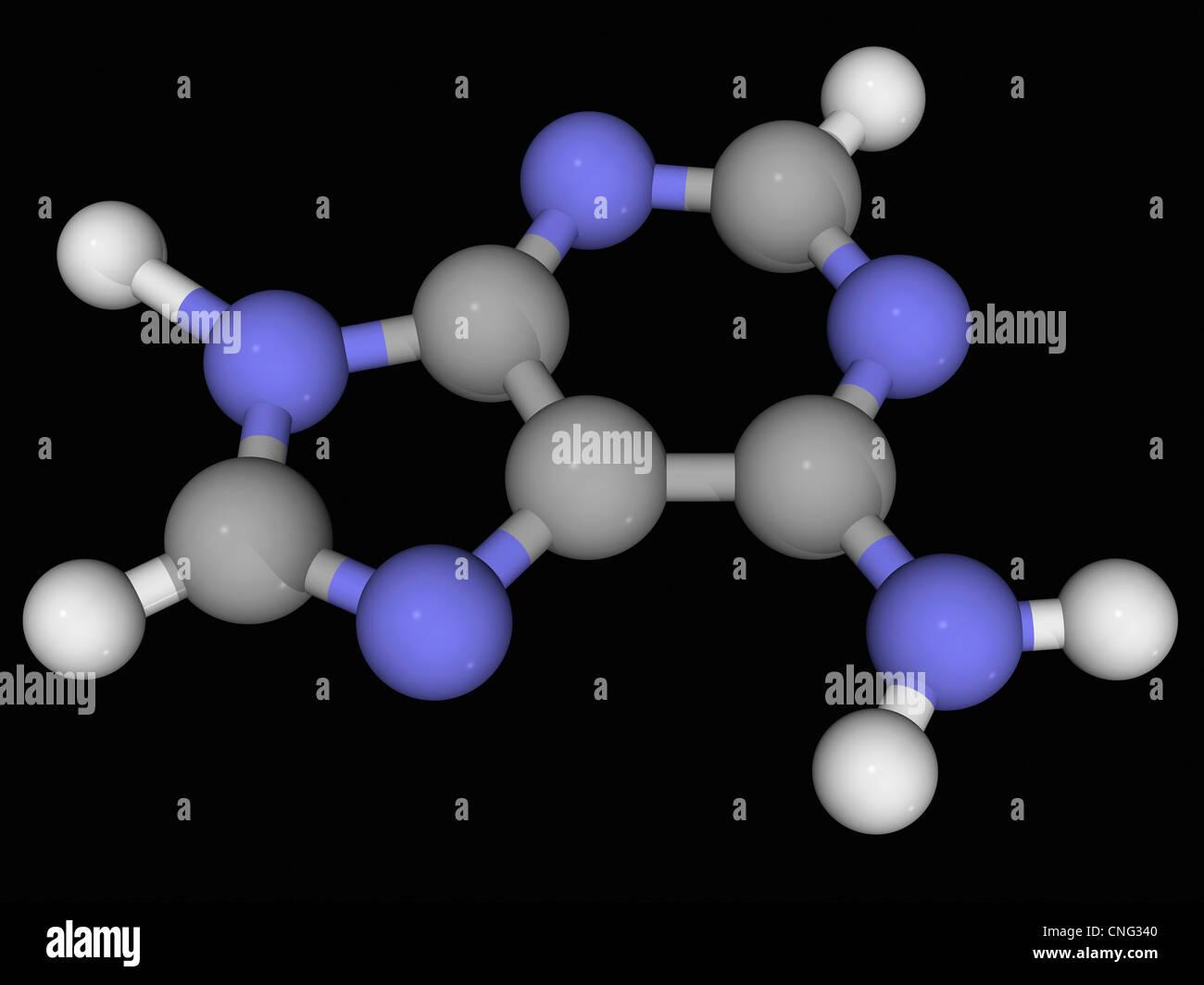 Adenine molecule - Stock Image