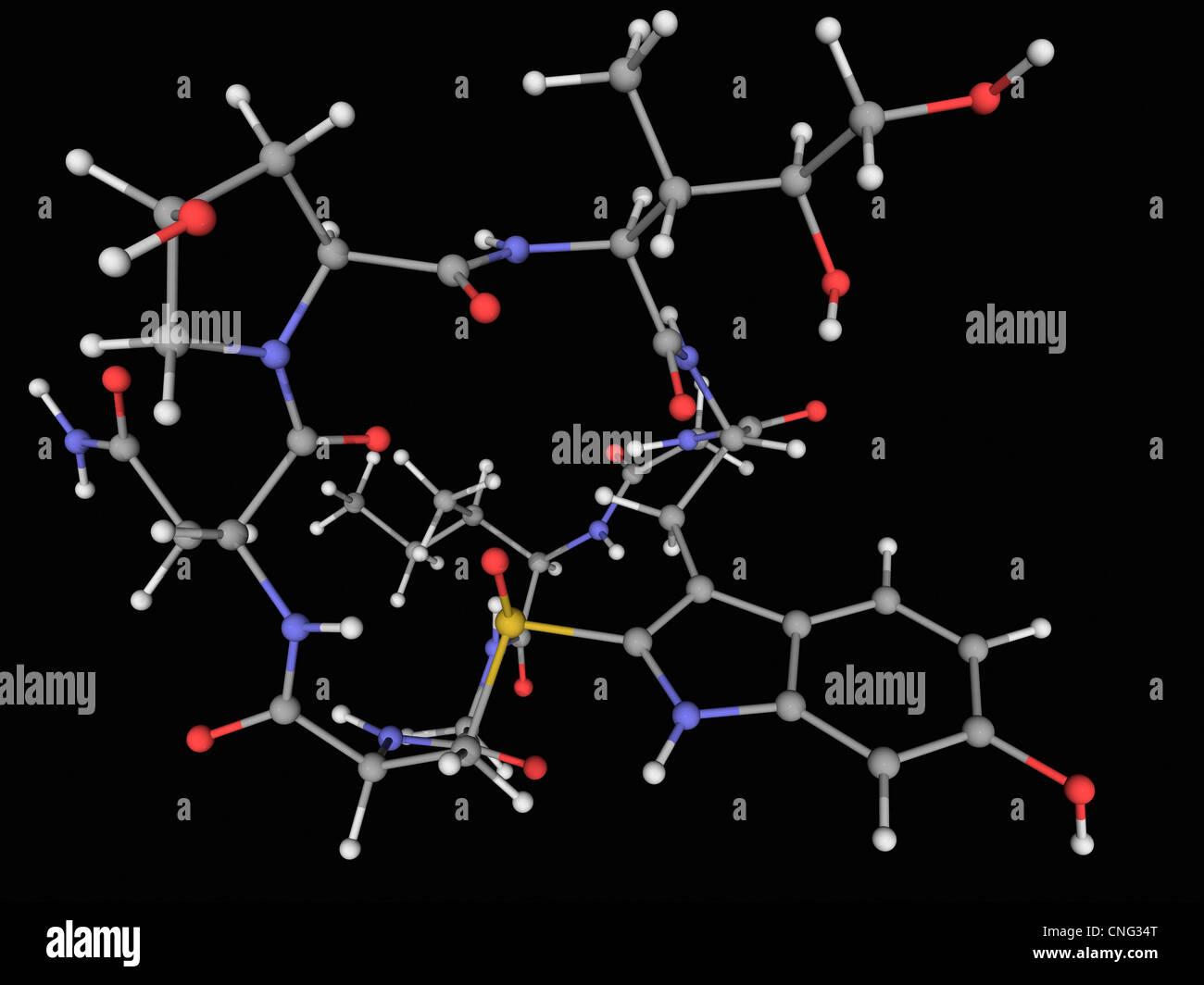 Alpha-Amanitin toxin molecule - Stock Image