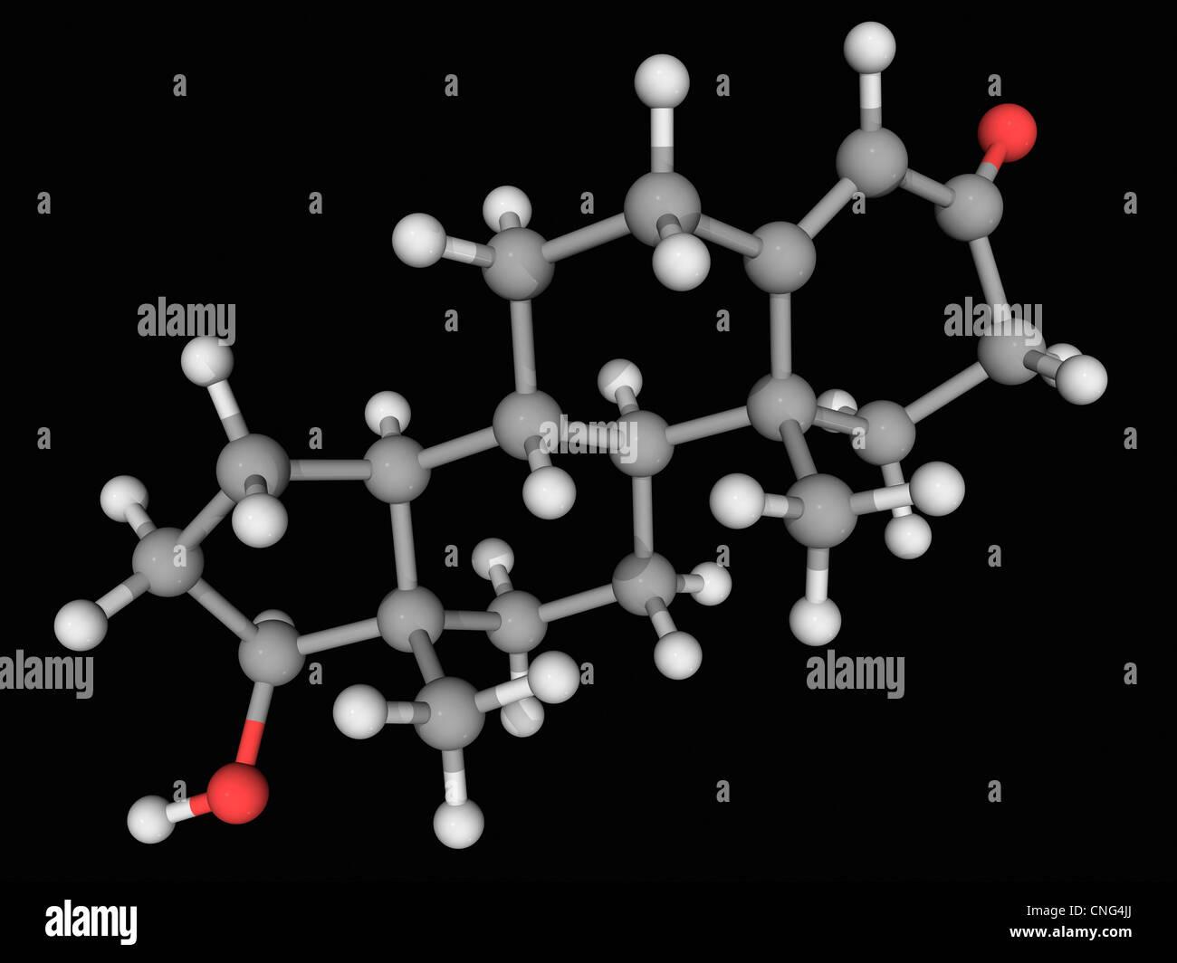 Testosterone hormone molecule - Stock Image