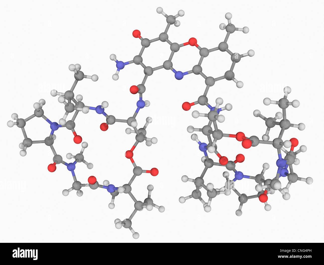 Actinomycin D drug molecule - Stock Image