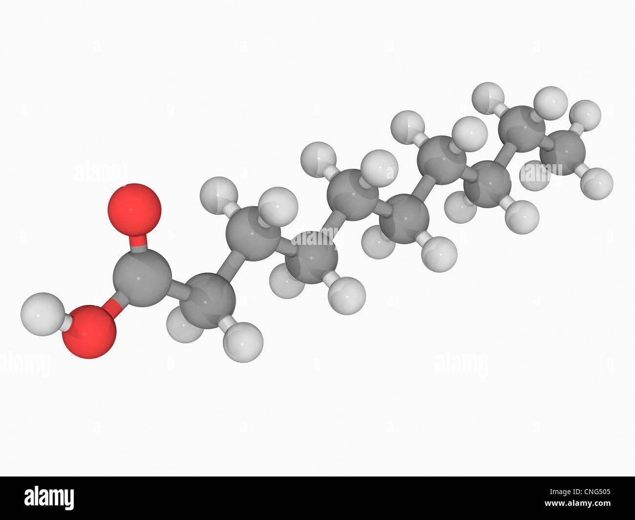 Capric acid molecule - Stock Image
