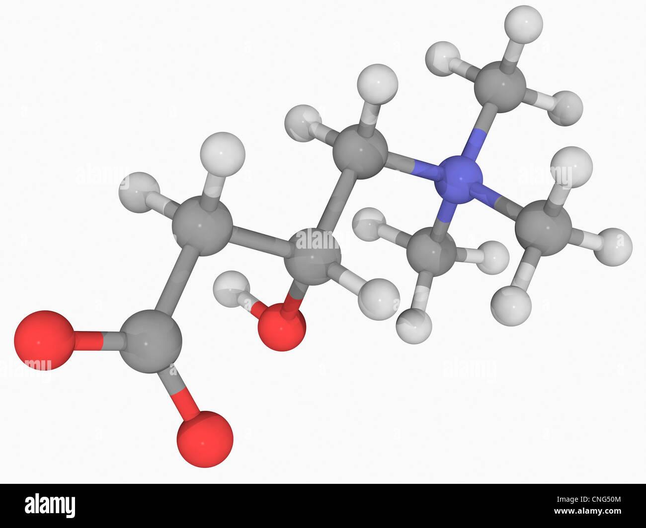 Carnitine molecule Stock Photo